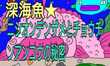 深海魚プチ雑学★長生きしたサメ★チョウチンアンコウ・オスの一生