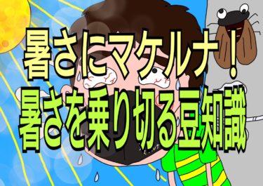 7月23日大暑★暑い夏を乗り切るための豆知識